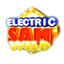 Wild Electric Sam