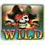 Wild Ghost Pirates